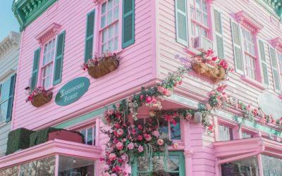 Jouw roze weeshuis